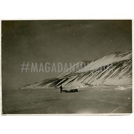 Фотография. Арктика